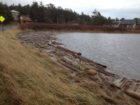 Extreme High tide at Fisherman Bay, Lopez Island